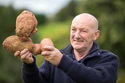 © Licensed to London News Pictures. 15/09/2017. Harrogate UK. Jo Atherton with his prize winning Potato at the Giant Vegetable competition at this years Harrogate Autumn Flower Show in Yorkshire. Photo Credit: Andrew McCaren/LNP