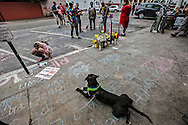 &quot;Dozer&quot; the dog waits near the spot where his master,  Brendon &quot;Dizzle&quot; Glenn,, was shot and killed by a LAPD officer.<br /> A town hall meeting was held at the Westminster Elementary School school in Venice over the recent LAPD shooting of a homeless man, Brendon &quot;Dizzle&quot; Glenn,  in Venice. The unarmed homeless man was shot and killed during a confrontation with a LAPD officer on Windward Ave in the heart of the community of Venice. Hundreds of residents and activist showed up to the town hall to vent and confront civic and LAPD leaders over the shooting.