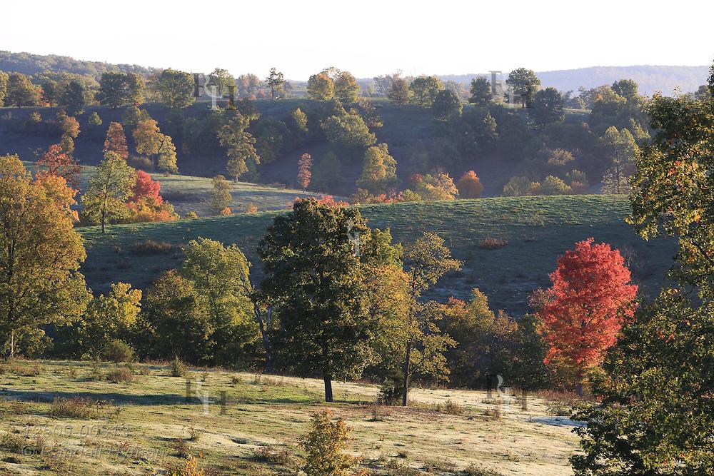 Early morning sun backlights autumn trees and pastures on Ozark farm near Viburnum, Missouri.