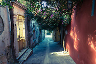 An alleyway sheltered by trees in the town of Archanes on the Greek island of Crete . Commissioned by PR Media Co.
