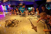 351021-1046G.Huey ~ Copyright: George H.H. Huey ~ Visitors watching the live shark display at the Mystic Aquarium.  Mystic, Connecticut.