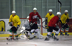 Players at second ice hockey practice of HDD Tilia Olimpija on ice in the new season 2008/2009, on August 19, 2008 in Hala Tivoli, Ljubljana, Slovenia. (Photo by Vid Ponikvar / Sportal Images)