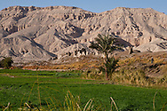 village and countryside in Medinet Habou, RAMSES 3 temple in Thebes  Louxor - Egypte    /  village et campagne de Medinet Habou, temple de Ramses 3 a Thebes  Louqsor - Egypt
