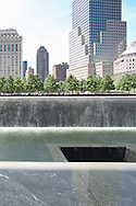 A poignant echo in the reflecting pool.