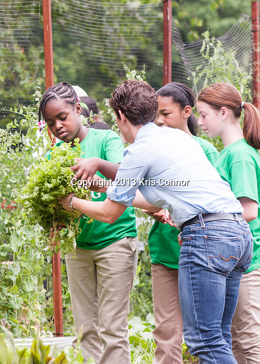 (L-R) Eliza Croom, Kyla Bourne, and Rachel Bradley,  of Sarah Moore Greene Magnet Technology Academy School, Knox County, TN  pick vegetables during an event where they and the First Lady Michelle Obama harvested the White House Kitchen Garden for the fifth year in a row at the White House on May 28, 2013 in Washington DC. Photo by Kris Connor
