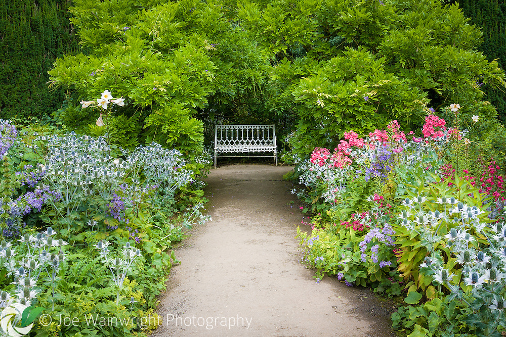 A lush border, with eryngiums, pentstemons and phlox leading to a bench beneath and arch of wisteria - at Hidcote Manor Garden, Gloucestershire.
