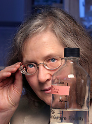 Elizabeth H. Blackburn, PhD, 60, of the University of California, San Francisco was named  to receive the 2009 Nobel Prize in Physiology or Medicine. Blackburn shares the award with Carol W. Greider of Johns Hopkins University School of Medicine and Jack W. Szostak of Harvard Medical School Dr.  Blackburn, pictured here in 2004 in her lab at Genentech Hall, is a leader in the area of telomere and telomerase research.  Photo by Kim Kulish