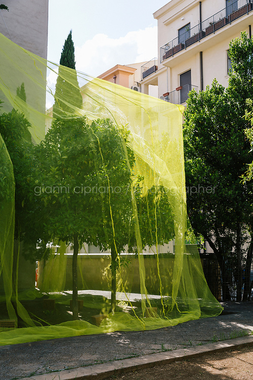 PALERMO, ITALY - 16 JUNE 2018: &quot;What is Above is What is Below&quot; (2018) by Cooking Sections is seen here in Giardino dei Giusti during Manifesta 12, the European nomadic art biennal, in Palermo, Italy, on June 16th 2018.<br /> <br /> Manifesta is the European Nomadic Biennial, held in a different host city every two years. It is a major international art event, attracting visitors from all over the world. Manifesta was founded in Amsterdam in the early 1990s as a European biennial of contemporary art striving to enhance artistic and cultural exchanges after the end of Cold War. In the next decade, Manifesta will focus on evolving from an art exhibition into an interdisciplinary platform for social change, introducing holistic urban research and legacy-oriented programming as the core of its model.<br /> Manifesta is still run by its original founder, Dutch historian Hedwig Fijen, and managed by a permanent team of international specialists.<br /> <br /> The City of Palermo was important for Manifesta&rsquo;s selection board for its representation of two important themes that identify contemporary Europe: migration and climate change and how these issues impact our cities.