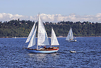 Yachts sailing on the Puget Sound, near Seattle, Washington State, USA, 200809060991.<br />