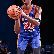 Westchester Knicks Forward NIGEL HAYES (20) attempts a free throw in the second half of a NBA G-league regular season basketball game between the Delaware 87ers and the Westchester Knicks (New York Knicks) Tuesday, Nov. 07, 2017, at The Bob Carpenter Sports Convocation Center in Newark, DEL