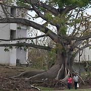 OCTOBER 5, 2017- RIO PIEDRAS, PUERTO RICO - <br /> University of Puerto Rico Rio Piedras campus following the destruction left by Hurricane Maria.<br /> (Photo by Angel Valentin)