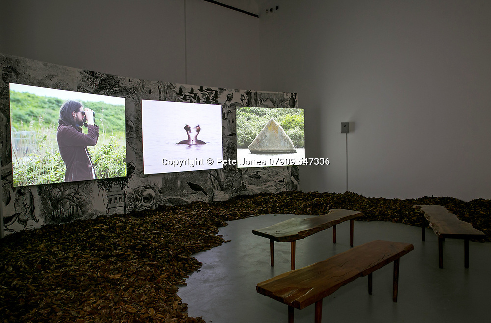 Natural Selection by Andy & Peter Holden;<br /> Towner Gallery;<br /> Eastbourne, East Sussex;<br /> 2nd February 2018.<br /> <br /> © Pete Jones<br /> pete@pjproductions.co.uk