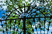 Sculptural wrought iron gate in the garden at Ballymaloe Cookery School, County Cork, Ireland