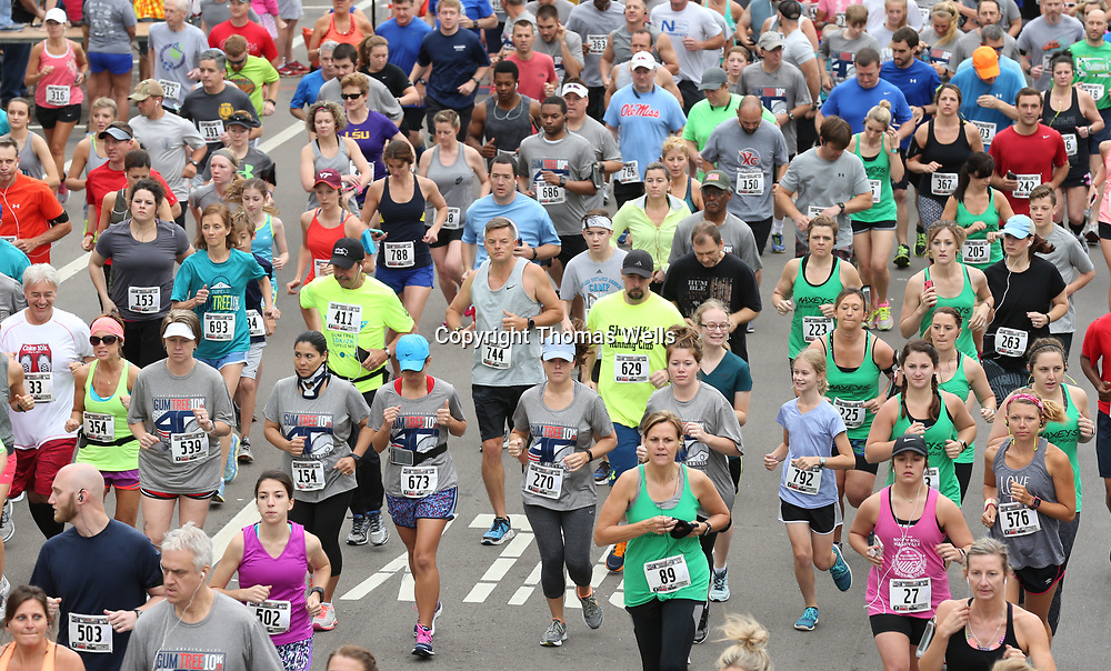 Hundreds of runners break from the startingline for the annual Gumtree 10K on Saturday.