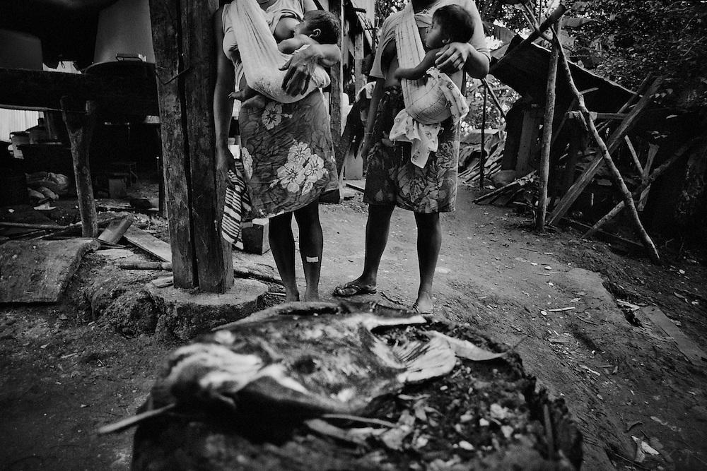 Guyane fran&ccedil;aise, Twenke, Haut-Maroni, zone a acces reglemente. <br /> <br /> Les poissons carnivores ing&egrave;rent des organismes impr&eacute;gn&eacute;s de mercure que l'on retrouve dans le placenta des m&egrave;res.