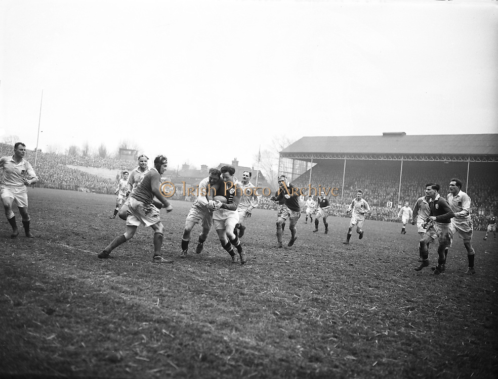 Irish Rugby Football Union, Ireland v England, Five Nations, Landsdowne Road, Dublin, Ireland, Saturday 14th February, 1953,.14.2.1953, 2.14.1953,..Referee- MR A W C Austin, Scottish Rugby Union, ..Score- Ireland 9 - 9 England, ..Irish Team,..R J Gregg, Wearing number 15 Irish jersey, Full Back, Queens University Rugby Football Club, Belfast, Northern Ireland,..M F Lane,  Wearing number 14 Irish jersey, Right wing, University college Cork Football Club, Cork, Ireland,  ..N J Henderson, Wearing number 13 Irish jersey, Right centre, N.I.F.C, Rugby Football Club, Belfast, Northern Ireland,..K Quinn, Wearing number 12 Irish jersey, Left Centre, Old Belvedere Rugby Football Club, Dublin, Ireland,  ..M Mortell, Wearing number 11 Irish jersey, Left wing, Bective Rangers Rugby Football Club, Dublin, Ireland,. . J W Kyle, Wearing number 10 Irish jersey, Stand Off, Captain of the Irish team, N.I.F.C, Rugby Football Club, Belfast, Northern Ireland,..J A O'Meara, Wearing number 9 Irish jersey, Scrum, University college Cork Football Club, Cork, Ireland,  ..W A O'Neill, Wearing number 1 Irish jersey, Forward, University College Dublin Rugby Football Club, Dublin, Ireland, ..R Roe, Wearing number 2 Irish jersey, Forward, Dublin University Rugby Football Club, Dublin, Ireland,..F E Anderson, Wearing number 3 Irish jersey, Forward, Queens University Rugby Football Club, Belfast, Northern Ireland,..T E Reid, Wearing number 4 Irish jersey, Forward, Garryowen Rugby Football Club, Limerick, Ireland, ..J R Brady, Wearing number 5 Irish jersey, Forward, C I Y M S Rugby Football Club, Belfast, Northern Ireland, . . J S McCarthy, Wearing number 6 Irish jersey, Forward, Dolphin Rugby Football Club, Cork, Ireland, ..R Kavanagh, Wearing number 7 Irish jersey, Forward, University College Dublin Rugby Football Club, Dublin, Ireland,..W E Bell, Wearing number 8 Irish jersey, Forward, Collegians Rugby Football Club, Belfast, Northern Ireland,.  .Engish Team,..N M Hall, Wearing number 1 Engish jer