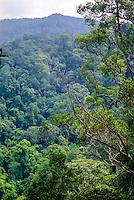 Indonesia, Sumatra. Bukit Lawang. Gunung Leuser nasjonalpark. Panorama view of the rainforest.