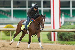 Derby 142 hopeful Brody's Cause with Miguel Garcia up were on the track for training, Wednesday, May 04, 2016 at Churchill Downs in Louisville.