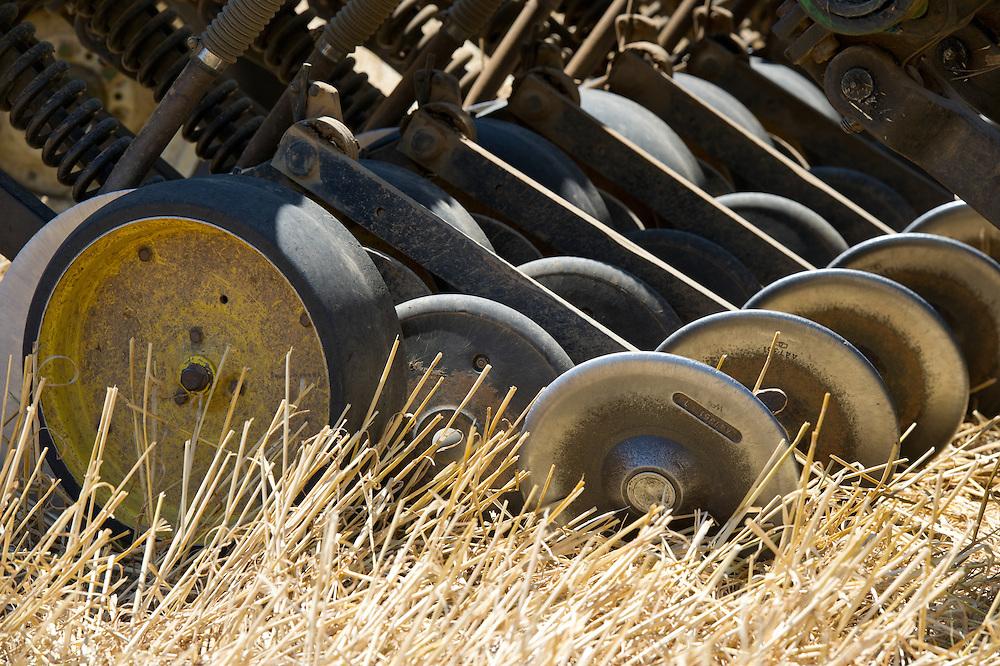 Blades of combine harvesting grain