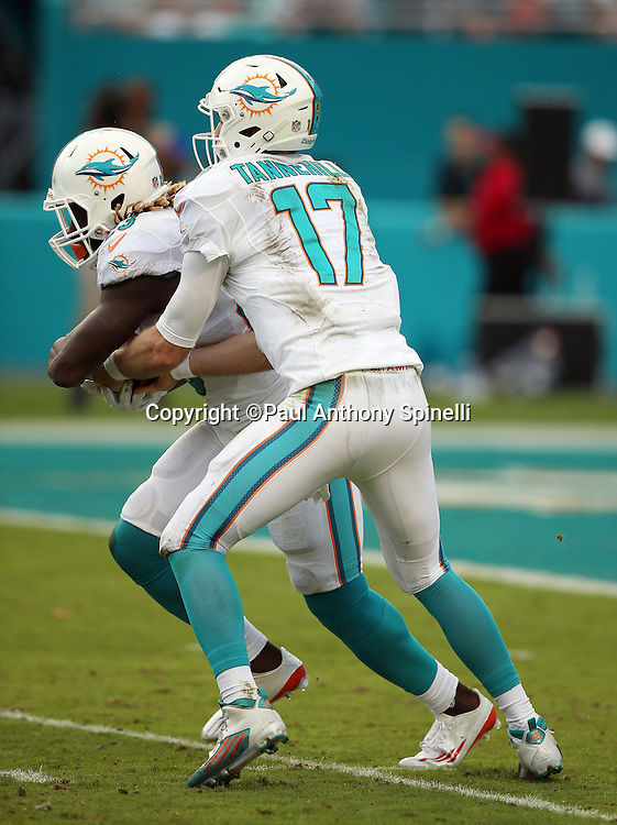 Miami Dolphins quarterback Ryan Tannehill (17) hands off the ball to Miami Dolphins rookie running back Jay Ajayi (23) during the 2015 week 13 regular season NFL football game against the Baltimore Ravens on Sunday, Dec. 6, 2015 in Miami Gardens, Fla. The Dolphins won the game 15-13. (©Paul Anthony Spinelli)
