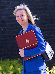 Downing Street, London, May 3rd 2016. Environment Food and Rural Affairs Secretary Elizabeth Truss arrives at 10 Downing Street for the weekly cabinet meeting. &copy;Paul Davey<br /> FOR LICENCING CONTACT: Paul Davey +44 (0) 7966 016 296 paul@pauldaveycreative.co.uk