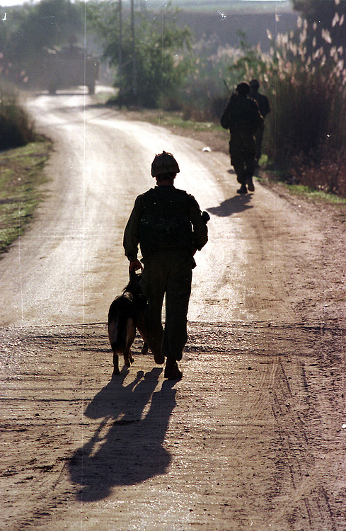 Soldiers and a bomb-squad dog on morning patrol, searching for bombs...Photo: Nadav Neuhaus