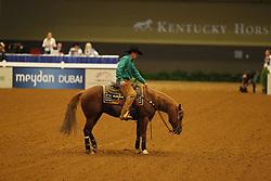 KOURY NETO Paulo, Spin Zone Whiz<br /> Kentucky - Alltech FEI WEG 2010<br /> /Stefan Lafrentz