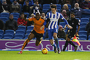 Brighton central defender, Lewis Dunk (5) battles with Wolverhampton Wanderers striker Benik Afobe (10) during the Sky Bet Championship match between Brighton and Hove Albion and Wolverhampton Wanderers at the American Express Community Stadium, Brighton and Hove, England on 1 January 2016. Photo by Phil Duncan.
