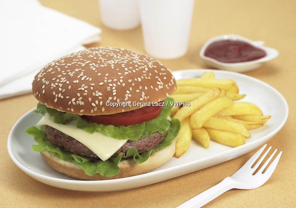 Plate with Hamburger and French Fries