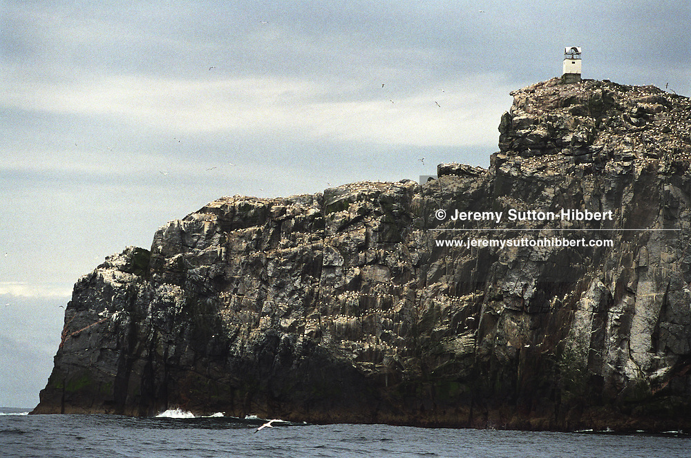 "The rocky island of Sula Sgeir, 50 miles west of Lewis, Scotland, in the North Atlantic. Sula Sgeir is inhabitated only by sea birds, except for 2 weeks each year when men from the town of Ness on Lewis arrive to cull 2000 young gannets known as ""guga"".."