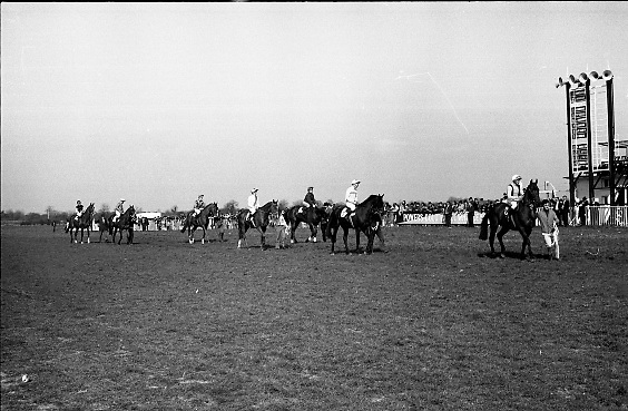 "The 'Powers' Gold Cup, Fairyhouse..1971..13.04.1971..04.13.1971..13th April 1971..The Running of the 'Powers' Gold Cup,sponsored by Irish Distillers, was run today at Fairyhouse, Co Meath..The race was won by 'Glending""ridden by John Donaghy. The horse is owned by Mr J.W.Osborne and trained by Mr P.D.Osborne..The horses are pictured parading in front of thr grandstand prior to the start of The Gold Cup."