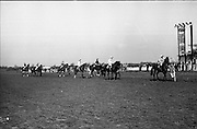 """The 'Powers' Gold Cup, Fairyhouse..1971..13.04.1971..04.13.1971..13th April 1971..The Running of the 'Powers' Gold Cup,sponsored by Irish Distillers, was run today at Fairyhouse, Co Meath..The race was won by 'Glending""""ridden by John Donaghy. The horse is owned by Mr J.W.Osborne and trained by Mr P.D.Osborne..The horses are pictured parading in front of thr grandstand prior to the start of The Gold Cup."""