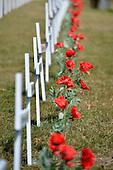 20160419 Wellington City Council - White Crosses - Fields of Remembrance