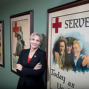 American Red Cross 2013