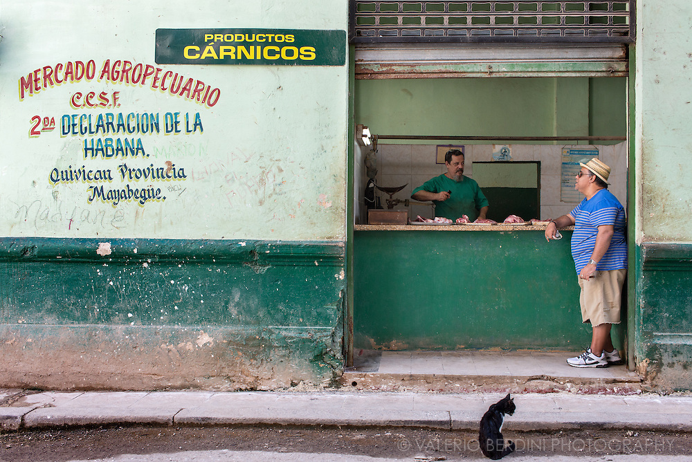 A cat waits for some pieces of meat in front of a butcher in Havan Vieja. Cuba, 2015.
