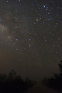 Scorpio and the Milky Way seen along Loop Road in the Florida Everglades the night before the Vernal Equinox.