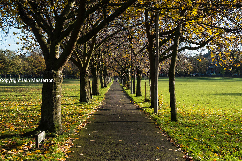 View along Boys Brigade Walk on the Meadows park in Edinburgh, Scotland, United Kingdom