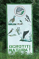 Codrii forest Reserve, central Moldova