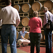 Ste. Michelle winery, Woodinville, Washington, people touring winery with oak barrels for aging and storing wine in background<br />