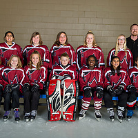 U12B-Ice Dragons