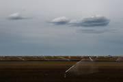 DUNNIGAN, CA - APRIL 4, 2015:  Sprinklers irrigate a freshly planted field. CREDIT: Max Whittaker for The New York Times