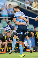 February 8, 2017: Sydney FC midfielder Milos NINKOVIC (10) celebrates his goal at Round 19 of the 2017 Hyundai A-League match, between Sydney FC and Wellington Phoenix played at Allianz Stadium in Sydney. Sydney FC won the game 3-1.