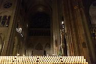 Paris. Notre dame de paris cathedral