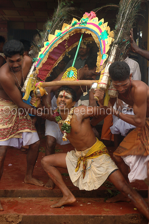 Udappuwa festival. The village, men and women, gather at the Mariamman Kovil in the north of the village. Here they bathe at the well, fall into a deep trance, dance kavadi, then they will move south to the main Vishnu Kovil, stopping at a Kataragama shrine on the way...The trance is very strong, they often have to be restrained by family & friends, screaming as this is done.