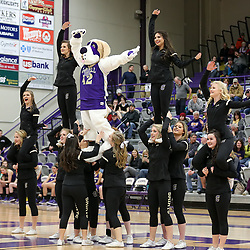 Carroll's cheer squad introduced the Halo mascot during Saturday's game against Rocky Mountain.