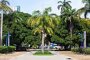 Recife_PB. Brasil<br /> <br /> Parque13 de maio em Recife, Pernambuco.<br /> <br /> 13 de Maio Park in Recife, Pernambuco.<br /> <br /> Foto: RODRIGO LIMA / NITRO