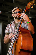 Tim Celfo on upright bass during Mason Porter's performance at the 2012 Appel Farm Arts & Music Festival