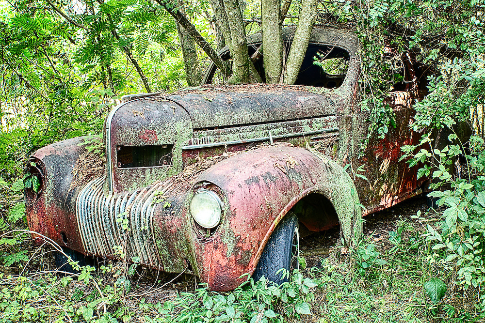 An old red truck with a tree growing up through the front windshield in the Old Car City junkyard in Georgia.