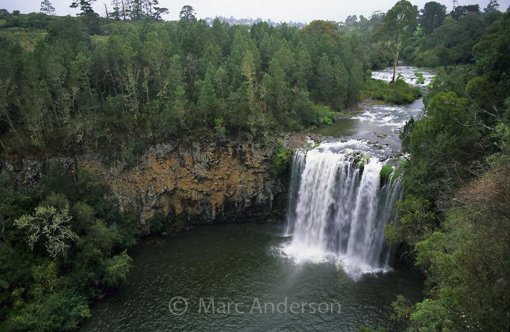 Dangar Falls, Dorrigo National Park, NSW, Australia.