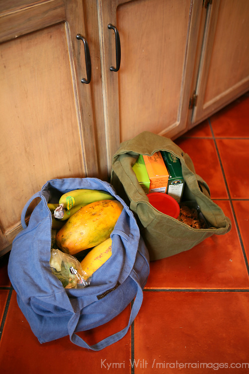 Reusable canvas grocery bags of organic produce and staples.